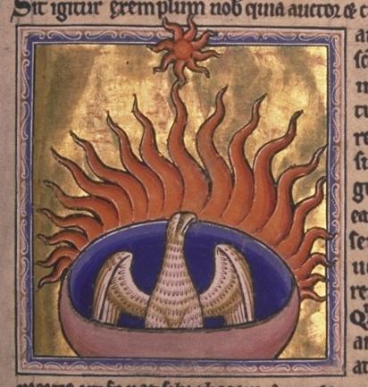 phoenix_from_aberdeen_bestiary